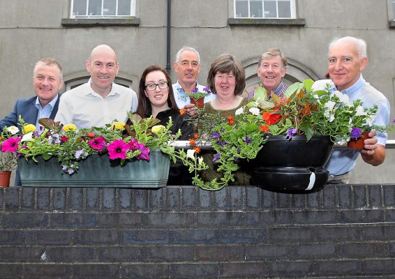 Waterford's Cultural Quarter is Blooming Marvellous